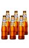 1664金啤酒250ML六支装
